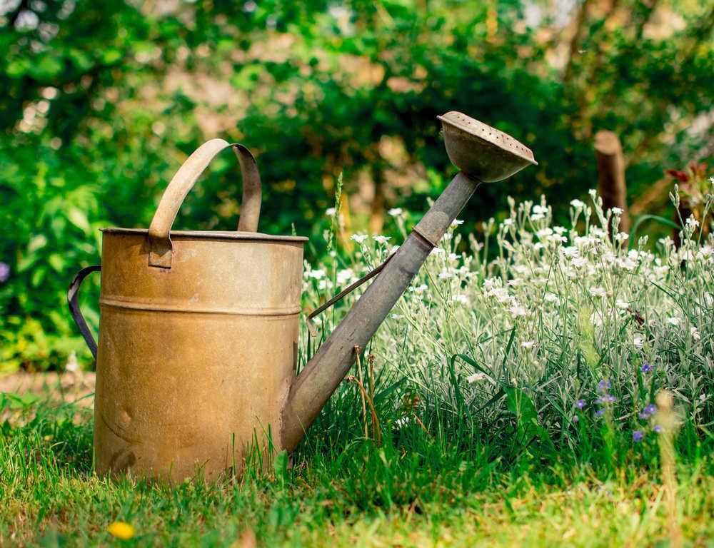Detalles que harán de tu jardín un lugar más acogedor y confortable